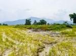 plotting land at panchetar tokha (3 of 20)