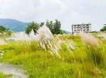 plotting land at panchetar tokha (4 of 14)