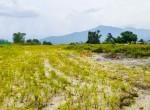 plotting land at panchetar tokha (4 of 20)