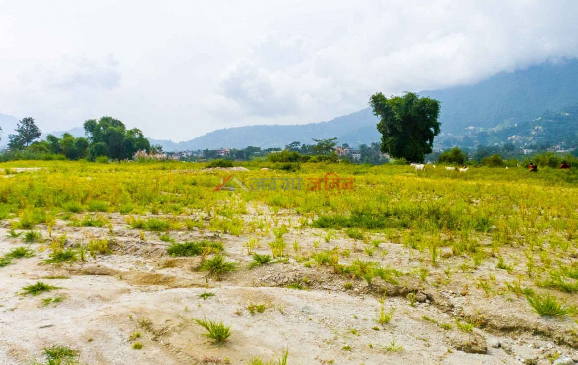 plotted lands in sale