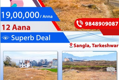 12 aana commercial land sale in sangla