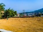 plotting at Kritipur-11