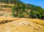 plotting at Kritipur-14