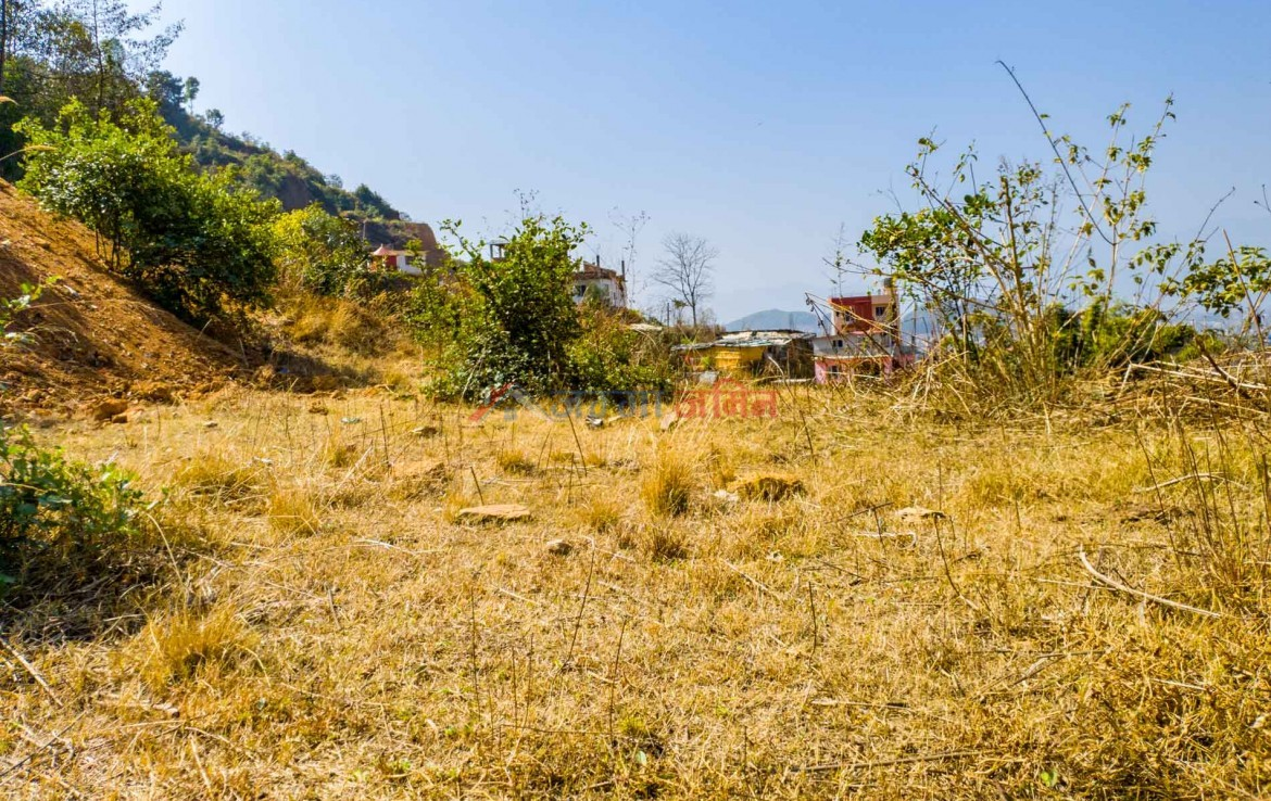 4 aana land for sale