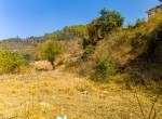 land for sale in godam chowr godawari-8