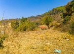 land for sale in godam chowr godawari-9