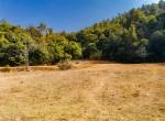 plotted land for sale in lele-godawari-19