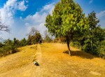 plotted land for sale in lele-godawari-2